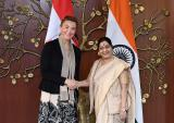 Visit of Deputy Prime Minister and Foreign Minister of Croatia to India (October 20–22, 2018)